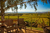 Yarra Valley Victoria wine holidays