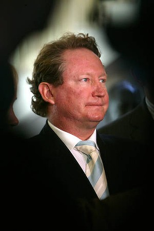 CEO of Fortescue Metals Group Andrew Forrest.