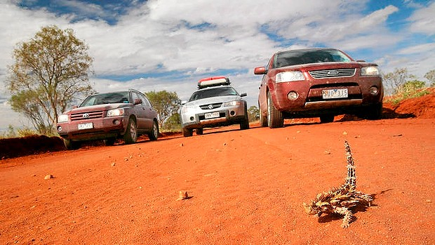 SUVs remain in demand ... Toyota Kluger, Holden Adventra, and Ford Territory. PHOTO Neil Newitt